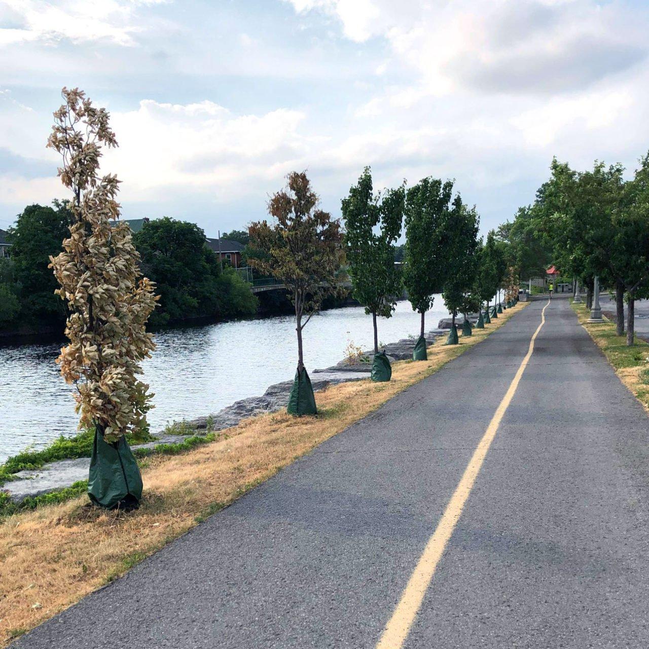 Riverfront Trail