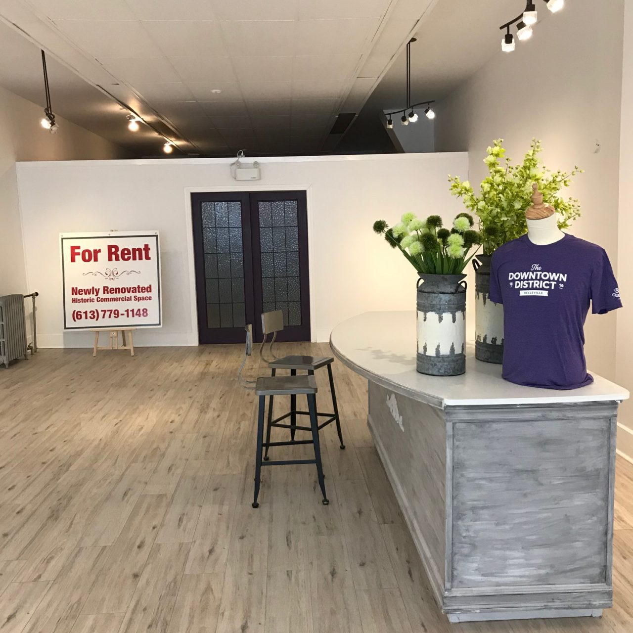 Rare Find: Historic Smaller Space 1700 sq/ft Turnkey