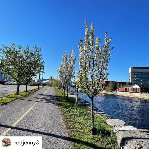 It's a beautiful day to get out and get some fresh air along the Riverfront Trail today ☀️ Posted @withregram • @redjenny3 Blue skies & sunshine makes everything seem possible again!! Bring on the Vitamin D!! #hanginthere #getoutside #bekind #happythurday